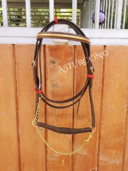 Decorated Presentation Halter & Lead